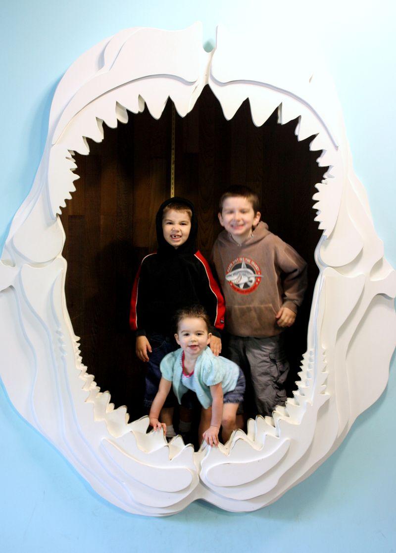 Aquarium 26